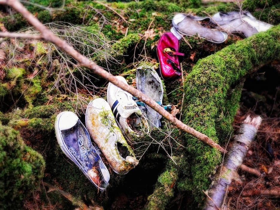 aokigahara-forest-japan-shoes