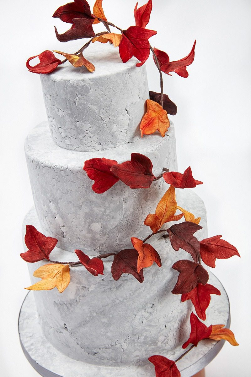 Autumn Ivy | Clare Anne Taylor Couture Cakes