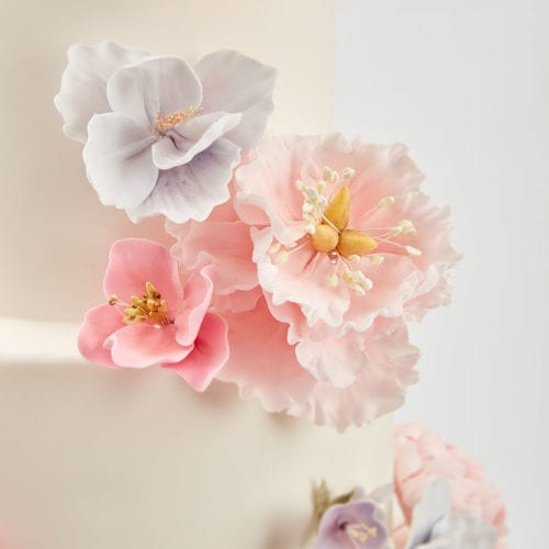 Floral Collection and wedding cake link on home page